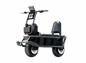 gotway extreme bull K4 electric scooter